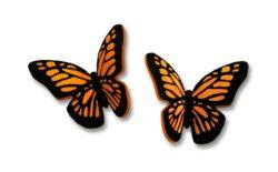 monarch post earrings by Sienna Sky