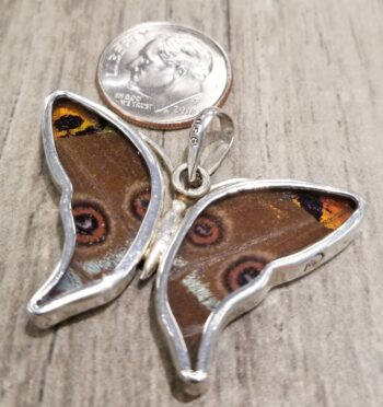 back of butterfly wing pendant