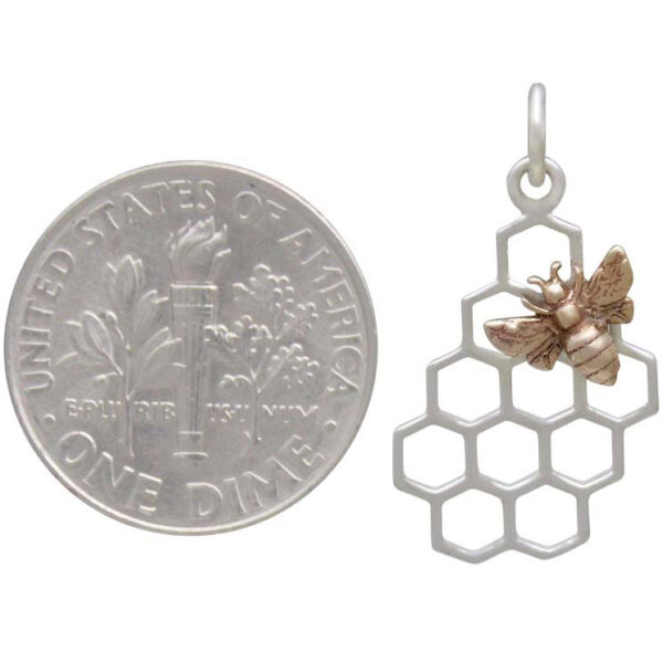 bee on honeycomb next to dime to help judge scale