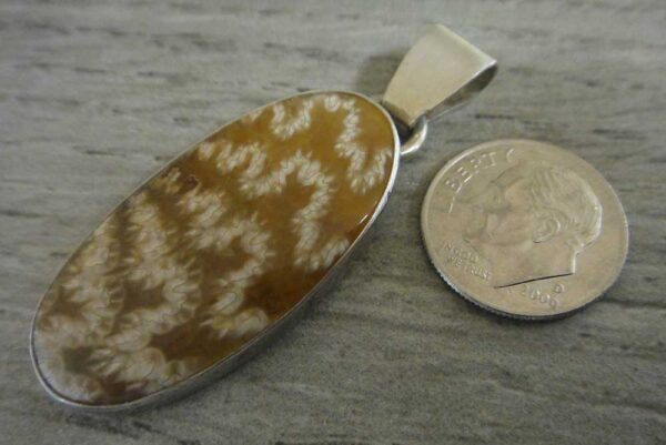 ammonite fossil pendant with dime for size