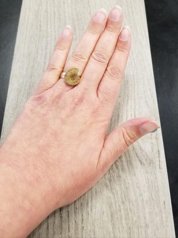 ammonite fossil ring on hand