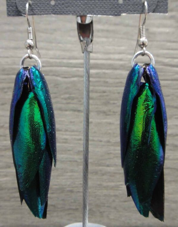 emerald beetle wing earrings, close up