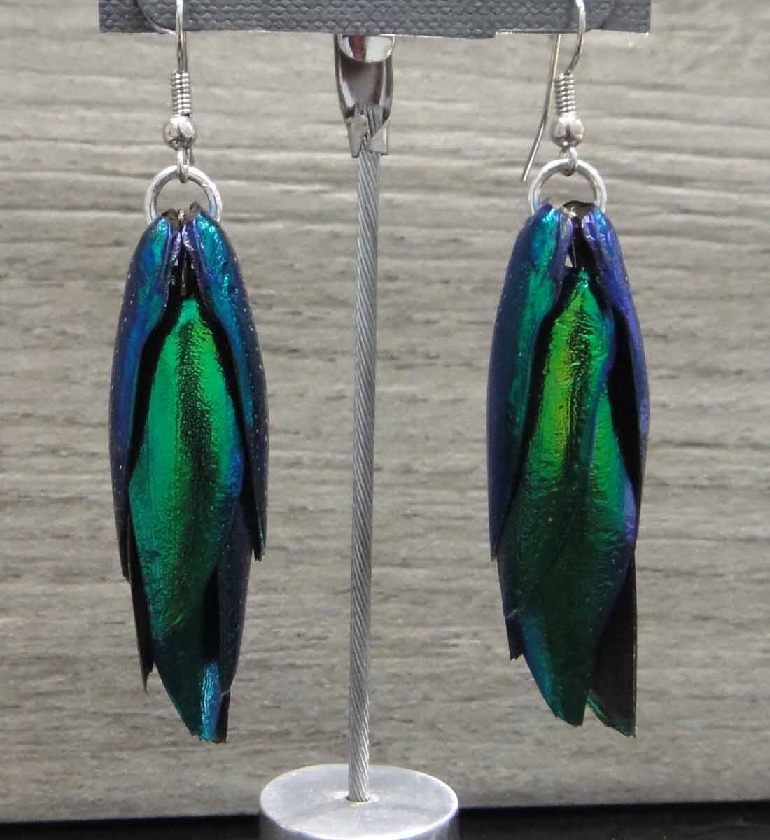 Naturally expired emerald beetle wing earrings