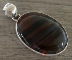Petrified conifer tree wood and sterling silver pendant