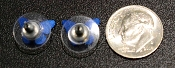 back of blue morpho butterfly studs with dime for scale