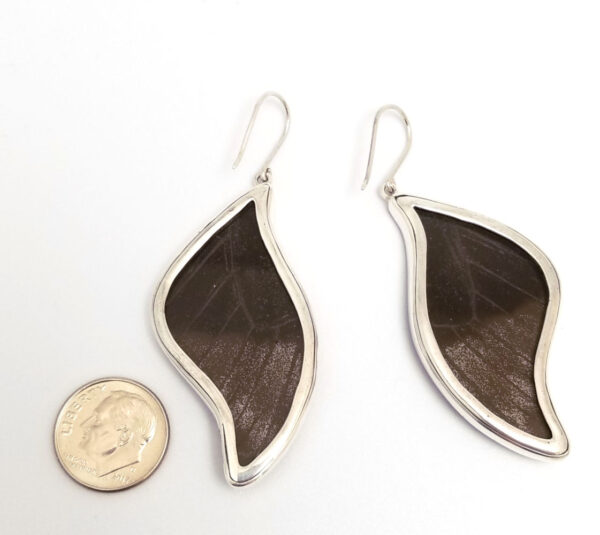 backside of blue morpho butterfly wing earrings with dime for scale