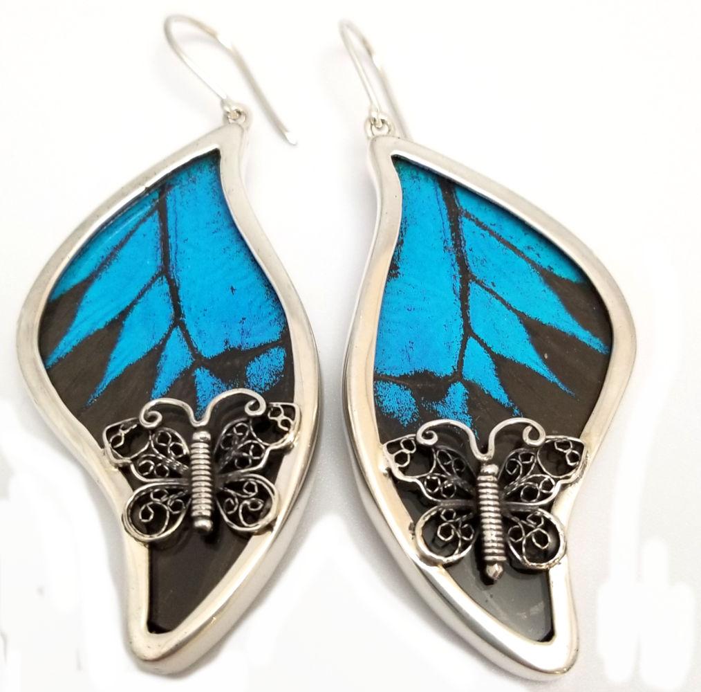 blue morpho real butterfly wings under glass, sterling silver earrings