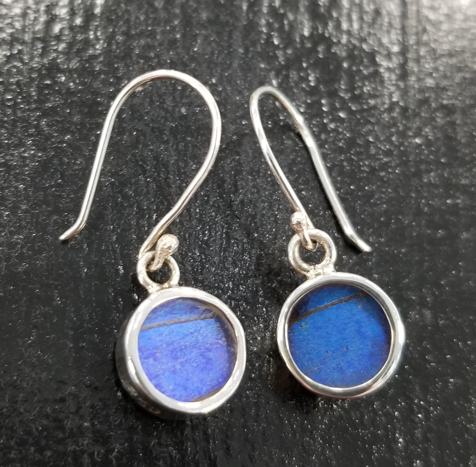 Real blue morpho petite sterling silver earrings