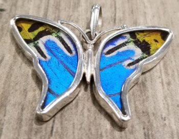 butterfly wing collage pendant