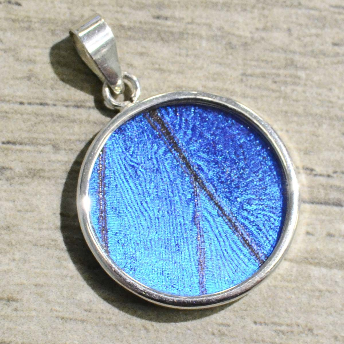 handmade blue butterfly wing and sterling silver circle pendant