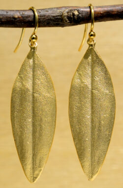 Michael Michaud handmade bronze Cordyline earrings