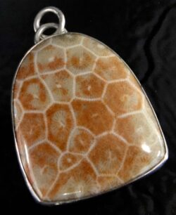 Fossilized brain coral and sterling silver pendant by Dale Repp