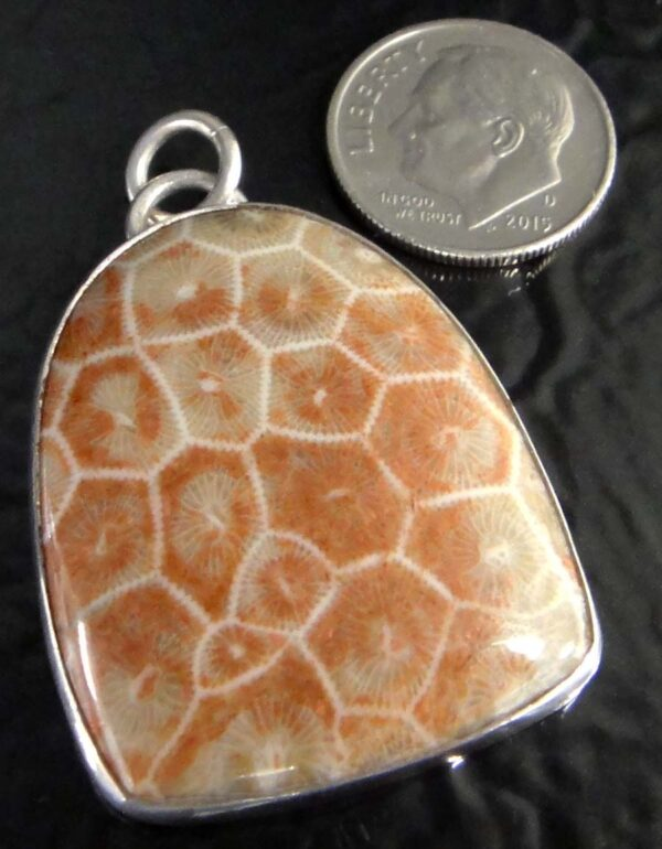 fossilized brain coral pendant with dime for size