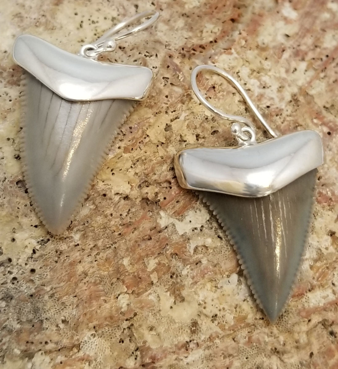fossil shark tooth and sterling silver earrings
