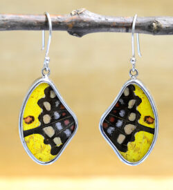 yellow and black spotted real butterfly wing and sterling silver wing shaped earrings