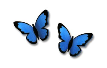 blue morpho stud earrings by Sienna Sky for Left Hand Studios