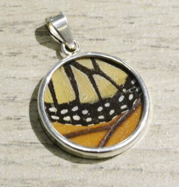 handmade Monarch real butterfly wing and sterling silver circle pendant