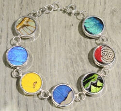 mixed colorful real butterfly wing circle bracelet