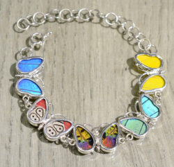 Colorful mixed real butterfly wing and sterling silver bracelet