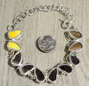 back of butterfly shaped real butterfly wing bracelet with dime