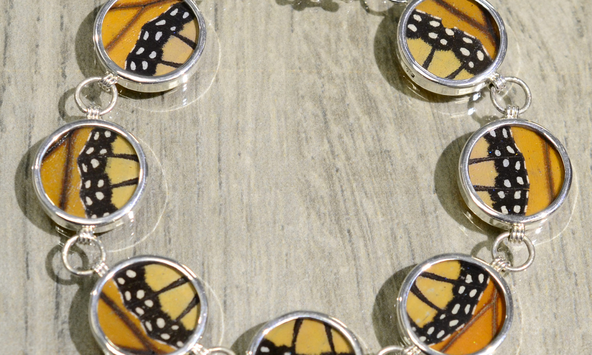 Monarch real butterfly wing and sterling silver circle shaped bracelet