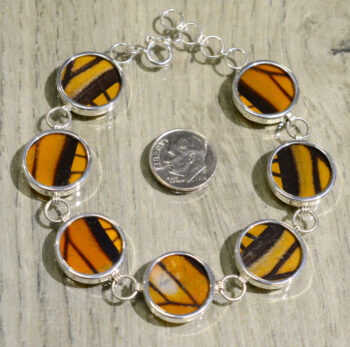 back of monarch real butterfly wing and sterling silver bracelet with dime