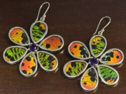 multi-colored real butterfly wing and amethyst large flower earrings