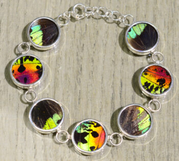 back of colorful real butterfly wing bracelet