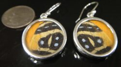 handmade orange and black circle butterfly wing earrings with dime for size