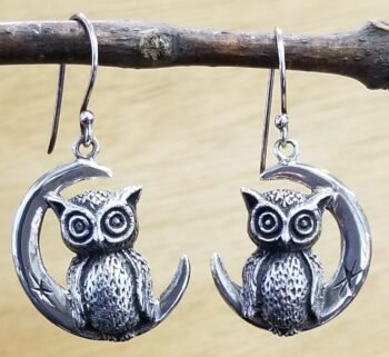 owl and moon sterling silver earrings by jewelry designer Anna King