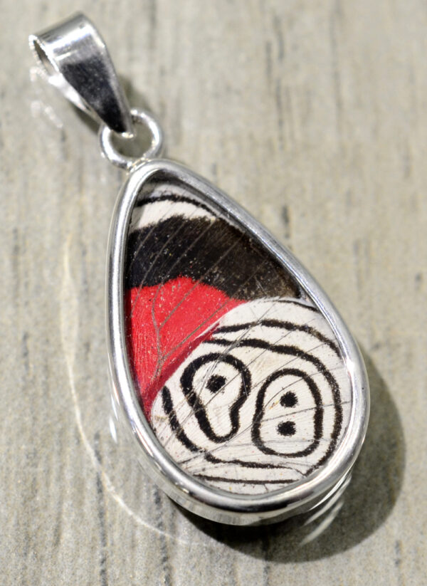 red, white and black butterfly wing pendant
