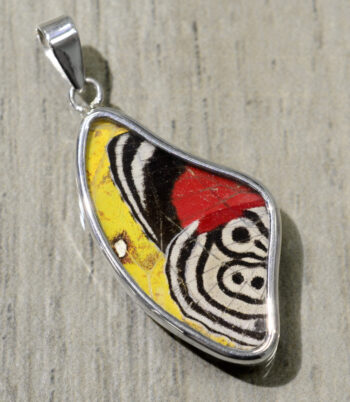 red yellow black and white butterfly wing wing shaped pendant