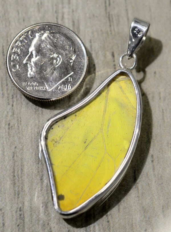 back of red yellow black and white butterfly wing wing shaped pendant with dime
