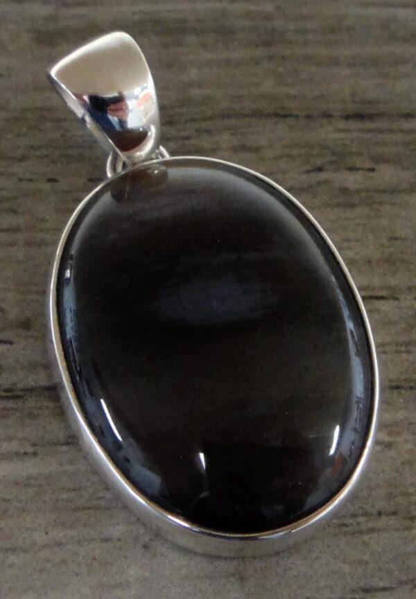 dark brown petrified conifer wood pendant