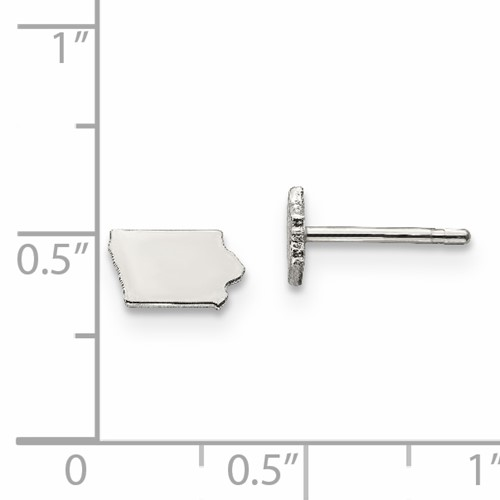 State of Iowa earrings with ruler