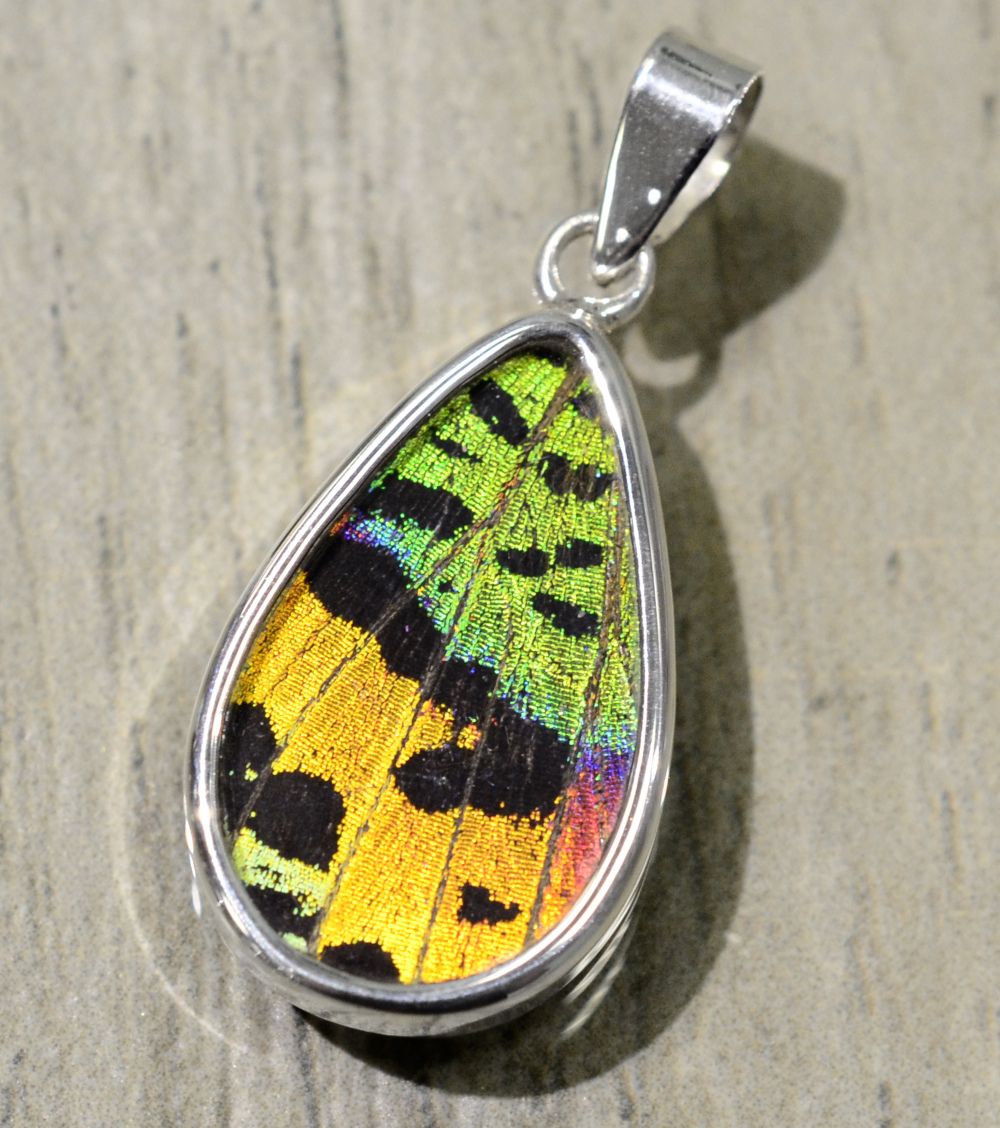 bright multicolor real butterfly wing and sterling silver teardrop shaped pendant