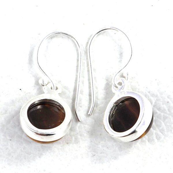 back of brown tiger's eye and silver earrings