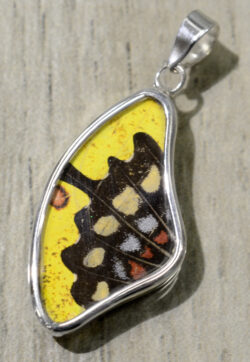 Yellow, black and red spotted butterfly pendant.